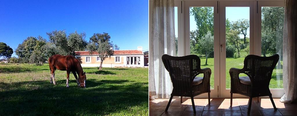 http://www.verdemar.net/wp-content/uploads/2014/04/verdemar-casa-do-grilo-2-1024x400.jpg
