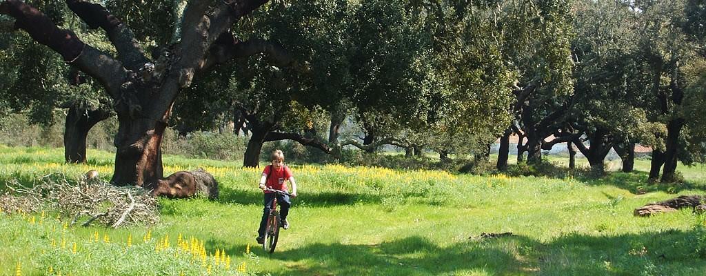 http://www.verdemar.net/wp-content/uploads/2014/04/verdemar-cycling-1024x400.jpg